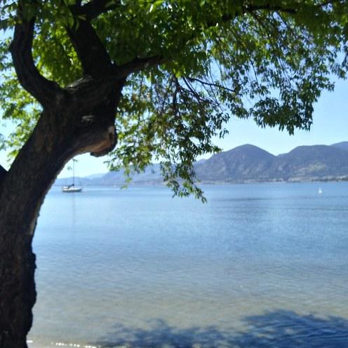 The lake in Naramata