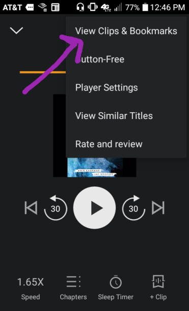 Click the ... at the top right in the app and select Bookmarks